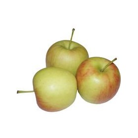 AppelDelcorf